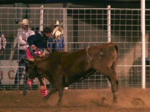 """Moment of Impact"" Cushenberry Memorial Bullfight 2010"