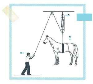 How to life a horse with your pinkie! (From Mechanick Exercises by Joseph Moxon)